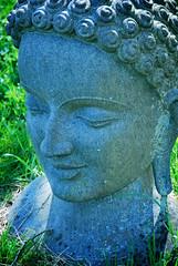 DSC_0329 (wierciochy) Tags: ireland sculpturepark cowicklow roundwood victoriasway indiansculpturepark