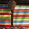 P100-0012  technicolor (Dina Rad) Tags: square colorful blind stripes shades squareformat multicolor