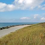 Ostseestrand auf der Insel Hiddensee zwischen Vitte und Kloster (2) thumbnail