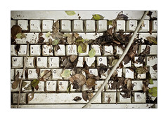 Zuckerberg`s nightmare (voinovitch 2.0) Tags: keyboard offline leaveusalone kindofdiary zuckerbergsnightmare