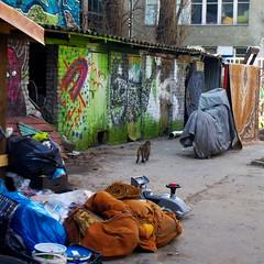 a yard (Darek Drapala) Tags: life city color abandoned lumix town rust ruins ruin dump poland polska panasonic rubbish warsaw warszawa panasonicg2