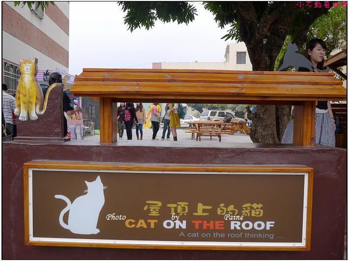 雲林虎尾屋頂上的貓 (16).JPG