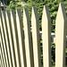 Emily's fence