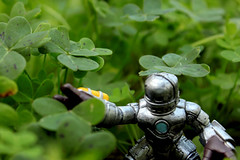 Iron-man in Clover Forest (See El Photo) Tags: plant man color colour green nature grass forest fun toy outside outdoors weeds colorful iron comic colore looking mask reaching character small mini games ironman collection plastic spots tiny comix greenery sliver reach clover grab couleur marvelcomics minature searching greenish grabbing comicbookcharacter bluedot seeelphoto marvl