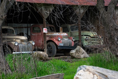 THE LINEUP (akahawkeyefan) Tags: antique trucks old fresno davemeyer shed posted sign