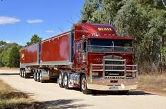 Beale (quarterdeck888) Tags: trucks transport semi class8 overtheroad lorry heavyhaulage cartage haulage bigrig jerilderietrucks jerilderietruckphotos nikon d7100 frosty flickr quarterdeck quarterdeckphotos roadtransport highwaytrucks australiantransport australiantrucks aussietrucks heavyvehicle express expressfreight logistics freightmanagement outbacktrucks truckies truckshow australiantruckshows 2017truckshows oaklands oaklandstruckshow oaklandstruckshow2017 workingshowtrucks workingtrucks bobtail primemover beale k100 k100e bdouble tippers glt grahamlustytrailers kenworth paintjob rudkinwhiley