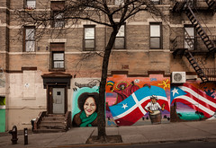Tree with Murals, Sunset Park, Brooklyn, NYC 2017 (Jack Toolin) Tags: brooklyn nyc walls urban cities