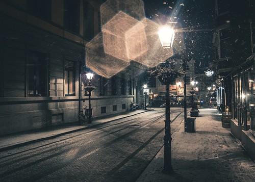 Haagse Winter