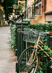 *** (Gabriela Tulian) Tags: basket bicycle bike block brownstone film golden greenwichvillage vertical neighborhood newyorkcity outdoors sidewalk stoop street sunlight tree vintage walking westvillage nyc parked