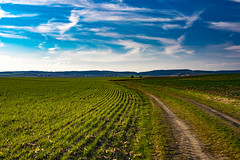 Beautiful South Moravia - Czech Republic (Just Julie - Photography) Tags: landscape nature czech