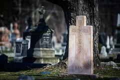 Resting (moerden68) Tags: ais ed if nikon nikkor 400mm f35 sonya7ii ilce7m2 legacylens cemetery stbernardsparishcemetery concordma manualfocus graveyard headstone tombstone