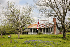A House In Texas In The Spring (wyojones) Tags: texas chappellhill washingtoncounty wildflowers yard tree bluebonnets clouds cloudscape landscape sky spring lupinustexensis texaslupine texasbluebonnet house tinroof mailbox porch chimney windmill newleaves flag usflag oldglory thestarsandstripes