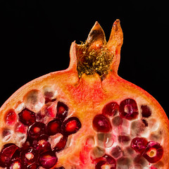 Pomegranate seeds (PhotoChampions) Tags: memberschoiceseeds macromondays pomegranates seeds hmm inexplore fruit macro