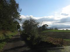 2005-10-15-0072.jpg (Fotorob) Tags: schotland weg voorwerpenoppleinened erfscheiding bomen planten muur wegenwaterbouwkwerken scotland killundine highland