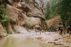 (Vanessa Valadez) Tags: thenarrows pentaxk1000 water river utah hiking zion zionnationalpark film 35mm analog rocks