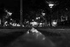 Rue 20_04_2017 (7 sur 34) (Jérôme Loche) Tags: photographie de rue life bordeaux france gironde vie noir et blanc couleur nb aquitaine personne inconnue femme homme jeune couché soliel bus passage piétons fleur rembarde barrière arbre pigeon moto velo poubelle déchets tramway rails nuit jour peintre envol route scooter pomme ruine portrait flou