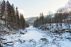 DSC01969 (igor_shumega) Tags: природа пейзаж лес зима река снег мороз