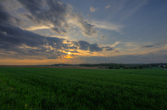 Sway and Sigh (JeffMoreau) Tags: sway sigh parkesburg pennsylvania field country sony a7ii zeiss 16mm rural sunset colorful chester county