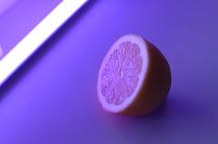 9263 (greenvisuals) Tags: nikon d7000 50mm 14g led lemon