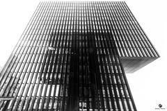 Düsseldorf Medienhafen (st.weber71) Tags: deutschland düsseldorf hyatthotel nikon nrw germany gebäude architektur d800 schwarzweiss licht sonne sonnenstrahlen medienhafen spiegelung