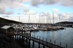 Coffs Harbour, NSW, Australia (phudd23) Tags: coffsharbour coast sea boats nsw newsouthwales australia