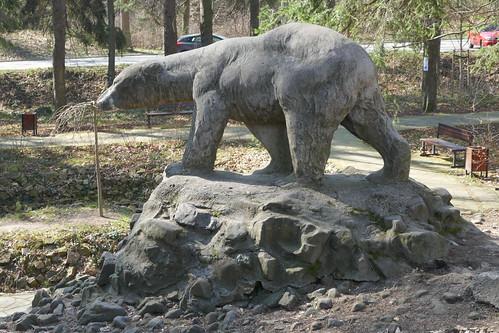 Posilający się niedźwiedź w Parku Leśnym w Polanicy-Zdroju