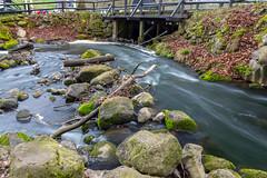 Streams (Casper-Larsen) Tags: canon 6d sigma24mmf14dghsmart 24mm siga art skov møllen water kenko polfilter polarizer rock bridge longexposure exposure long århus aarhus