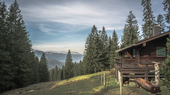 Cabin in the woods (DC P) Tags: dürrnbachhorn chiemgauer alpen germany bayern deutschland salzburg österreich reiteralpe reiter alm wait for winter landscape nature cloud clouds high trekking travel bundesländern tree trees beautiful outdoor mountain peak hill mountainside autumn colors color fantastic hiking adventure soe bej la quinta essenza flickrtravelaward world destinations locations nwn explore serene green colorful weather panorama wideangle wide landschaft view alpe field grassland cabin old barn farm valley sony a7rii forest hut hutte alpine hütte