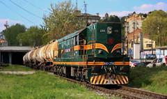 SK 661-256 (vozNS) Tags: diesel loco emd locomotive serbia green dizel lokomotiva srbija zelena vehicle railway vozilo voz train železnica