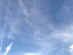 April 09, 2017 at 07:28PM (Mr T UK) Tags: ios photos cloud clouds sky outdoor blue white grey dark light sun sunshine cloudy clear overcast iphoneography mobile 365days 365day project365 cloud365