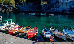 Primo sole al porticciolo (Gian Floridia) Tags: cinqueterre liguria vernazza barche colori mattino porticciolo primosole sole