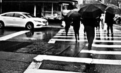 April Showers (Robert S. Photography) Tags: street scene rain crowd umbrellas spring rainydays bw brooklyn nyc sony dscwx150 iso100 april 2017