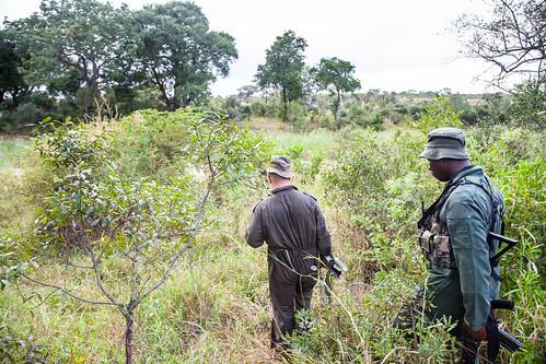 KrugerParkREIZ&HIGHRES-78