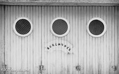 'Burgondes' Donzy, the Nièvre, January 2017 (serial_snapper) Tags: républiquefrançaise signage building blackwhite nièvredépartement bourgognefranchecomtérégion donzy bourgognefranchecomté france fr