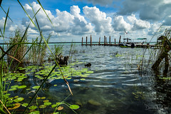 Bacalar (129) (Danni Thompson) Tags: travel backpacker mexico 2015 november