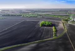 Vojvodina njive (AleksandarM021) Tags: vojvodina vojvodjanski agriculture njiva njive serbia srbija serbiaandmontenegro panorama