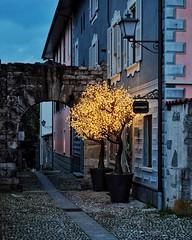 ascona @ dusk (dan.boss) Tags: dusk dark alley trees night ascona ticino switzerland