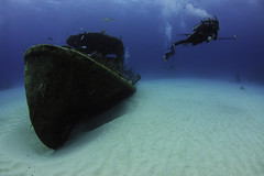 papa doc with diver- (b.campbell65) Tags: adventure beautiful blue caribbean coral dive diver diving exploration fin fish french ichthyology marine nature ocean old paradise reef sea ship sunken transport travel tropical undersea underwater vacation water wreck wrecks