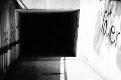 (nicohoelke) Tags: intothedarkness blackwhite lichtundschatten tunnel