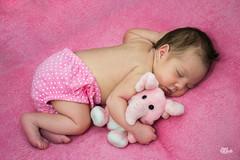 _DSC0051 (Jonas Kakaroto Honorato) Tags: jkakaroto newborn recemnascido baby bebe luna criança child