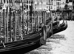 Gondole (V Photography and Art) Tags: mono blackandwhite blackwhite gondolas row venice zoom depthoffield canal grandcanal