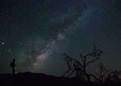 Chasing Dreams ! (shalabh_sharma7) Tags: night nightphotography longexposure california deathvalley nps100 findyourpark nationalpark deathvalleynationalpark sonya7711 tokina travel milkyway starynight