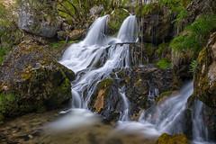 Les cascades de la Doriaz - Lovettaz (73) - 03 (glassonlaurent) Tags: cascade 73 savoie france rivière water waterfalls landscape paysage eau cascades la doriaz lovettaz