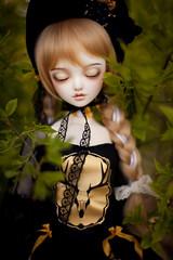 gold deer (koroa) Tags: bjd doll leekeworld feeriedoll feeriedollatelier sd gothic