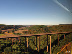 Desde el Viaducto del Malleco (Thefx / Francisco) Tags: chile road bridge train tren carretera sur surdechile viaducto ruta5 collipulli malleco terrasur regindelaaraucana viaductodelmalleco redsur romalleco terrasurtemuco