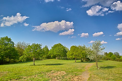 Steinerberg (realityfanclub) Tags: blue trees sky mountains tree green clouds forest germany landscape outside photo day sigma eifel landschaft foveon x3 steinerberg dp1s