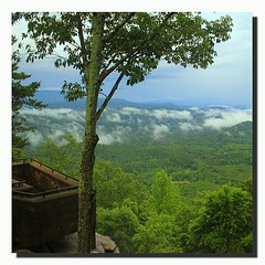Smoky Mountains... #LookRock #Trees #Plants #Vista #Clouds #Flora #GSMNP #T2i #WallandTn (his 2.0) Tags: square squareformat normal iphoneography instagramapp uploaded:by=instagram