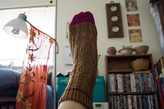tiberius 2 (khasut) Tags: socks knitting cookieasockclub patterntiberius