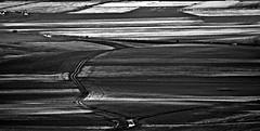 (enricoerriko) Tags: world madrid nyc italien girls red sea bw italy woman paris milan rome men verde green london love yellow festival female faro photo mare corse moscow web ferrari made giallo cielo villa land modena vela terra lotta cavalli amore molo italie marche vongole adriatico ancora filosofia binari manifestazione campi cavalieri bitta rossini vele civitanovamarche portocivitanova cartacanta citan sanmarone civitanovaalta vongolare erriko civitanovese enricoerriko