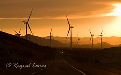 driving through a wind farm at sunset (rlonas) Tags: california road ca sunset mountains drive highway energy driving desert wind farm freeway i8 img7255